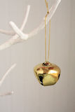 виды колокола золота Стоковое Изображение