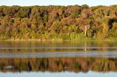 Виды на озеро Стоковое Изображение RF