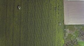Виды с воздуха реки melt снега весны Стоковые Изображения