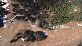 Виды с воздуха реки melt снега весны сток-видео