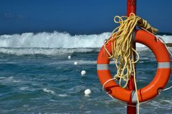 вкладчик жизни пляжа стоковые фотографии rf