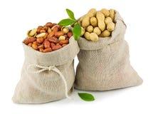 Вкладыши арахиса с зелеными листьями Стоковые Фотографии RF