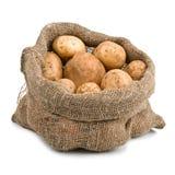 вкладыш картошек хлебоуборки мешковины сырцовый Стоковое фото RF