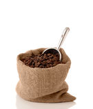 Вкладыш кофейного зерна Стоковые Изображения