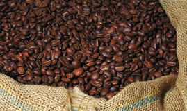 вкладыш кофе фасолей Стоковое Изображение RF