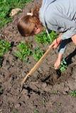 включенные детеныши женщины weeding сада Стоковые Фотографии RF