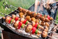 вкусная зажаренная еда баклажанов зажгла овощи nutritious вкусных томатов грибов полезные вегетарианские стоковая фотография