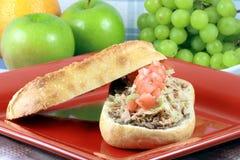 вкусная среднеземноморская туна сандвича Стоковое Изображение