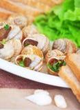 Вкусное блюдо escargot Стоковое фото RF