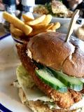 вкусное еды из закусочных цыпленка бургера горячее стоковая фотография