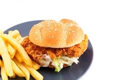 вкусное еды из закусочных цыпленка бургера горячее Стоковые Изображения