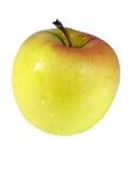 вкусное золотистое Стоковое фото RF