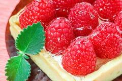 Вкусное пирожное при поленики украшенные с лист мяты на розовой предпосылке Стоковое Изображение