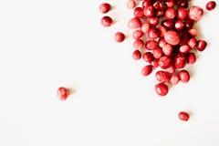 Вкусные и здоровые красные клюквы Стоковые Изображения