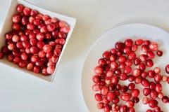 Вкусные и здоровые красные клюквы Стоковое фото RF