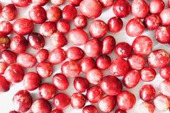 Вкусные и здоровые красные клюквы Стоковая Фотография