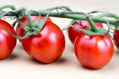 Вкусные и зрелые томаты вишни с капельками воды Помытый ve Стоковое Фото