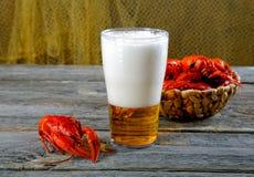 Вкусные кипеть ракы и пиво на таблице Стоковое Изображение