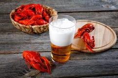 Вкусные кипеть ракы и пиво на таблице Стоковая Фотография