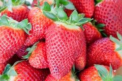 вкусные красные клубники Стоковая Фотография RF