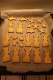Вкусные печенья Стоковая Фотография RF