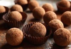 Вкусные трюфеля шоколада напудренные с какао стоковая фотография