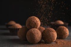 Вкусные трюфеля шоколада напудренные с какао стоковые фото