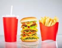 Вкусные fries гамбургера и франчуза Стоковое фото RF