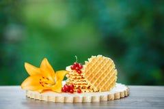 Вкусные waffles на деревянной доске с предпосылкой зеленого bokeh Стоковые Изображения RF
