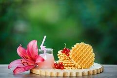 Вкусные waffles на деревянной доске с предпосылкой зеленого bokeh Стоковые Изображения