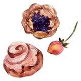 Вкусный десерт торта и плюшки сладкий r Изолированный элемент иллюстрации десертов бесплатная иллюстрация