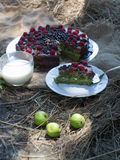 Вкусный десерт торта с ягодами Стоковые Изображения