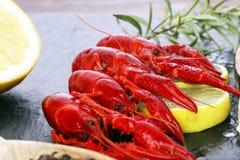 вкусный кипеть крупный план раков на каменной таблице, обедающем морепродуктов, нет Стоковые Фотографии RF