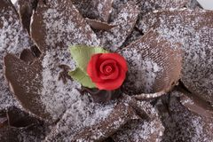 вкусный красный цвет поднял Стоковые Изображения