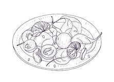Вкусный салат на руке плиты нарисованной с линиями контура на белой предпосылке Очень вкусная еда veggie ресторана сделанная из п бесплатная иллюстрация