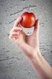 Вкусный свежий зрелый персик Стоковая Фотография RF