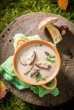 Вкусный суп гриба с грибами и петрушкой Стоковое Изображение RF