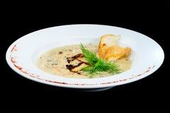 Вкусный суп сливк гриба с петрушкой и специями Стоковые Изображения