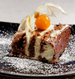 Вкусный торт шоколада с fhysalis Стоковые Фото