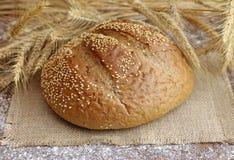 Вкусный хлеб рожи с колосками Стоковая Фотография RF