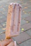 Вкусный popsicle льда красной фасоли Стоковая Фотография