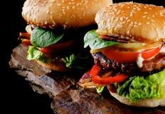 2 вкусных гамбургера Стоковые Изображения RF