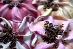 Вкусы мороженого Стоковые Изображения RF
