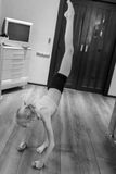 включенная гимнастика девушки Стоковые Изображения