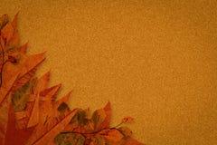 включенный архив eps 8 осеней выходит вектор картины иллюстрация вектора