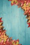 включенный архив eps 8 осеней выходит вектор картины Стоковое Фото