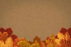 включенный архив eps 8 осеней выходит вектор картины Стоковое Изображение RF