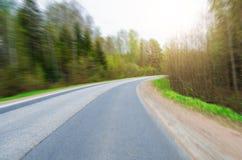 Включите дорога асфальта в лесе Стоковое фото RF