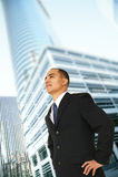 владелец бизнеса успешный Стоковые Изображения RF