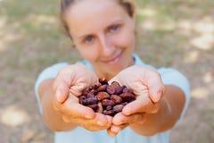 Владение молодой женщины в бобах кака рук коричневых высушенных заквашенных стоковая фотография rf